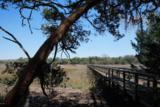 81 Bull Point Drive - Photo 10