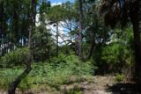 104 & 108 Fripp Point Road - Photo 15