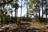 1054 Curisha Point - Photo 2