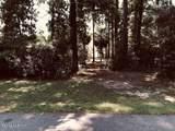 4 Woodstork Watch - Photo 2