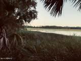 4 Woodstork Watch - Photo 3