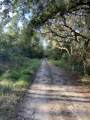 68 Ponderosa Road - Photo 5