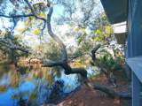 857 Water Oak Cove - Photo 8