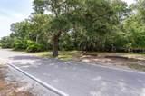 631 Dolphin Road - Photo 11