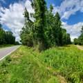 95 Big Estate Road - Photo 3
