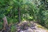 8326 Coosaw Scenic Drive - Photo 45