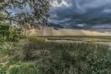 228 Cotton Dike Road - Photo 44