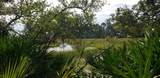 360 Blue Gill Road - Photo 1