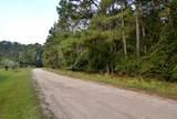 464 Paige Point Bluff - Photo 1