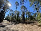 4200 Sand Hills Road - Photo 45