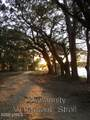 365 Distant Island Drive - Photo 21