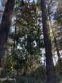61 Winding Oak Drive - Photo 10