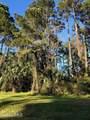 61 Winding Oak Drive - Photo 3