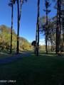 61 Winding Oak Drive - Photo 6