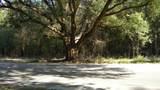 3300 Bees Creek Road - Photo 6