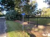 107 Jenkins Bluff Drive - Photo 3