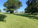 111 Jenkins Bluff Drive - Photo 2