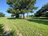 111 Jenkins Bluff Drive - Photo 4