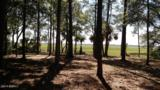 830 Island Circle - Photo 3
