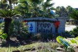 379 Tarpon Boulevard - Photo 9