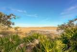 913 Marsh Dunes Road - Photo 3