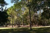 685 Distant Island Drive - Photo 12