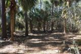 108 Winding Oak Drive - Photo 5