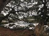2247 Plantation Drive - Photo 8