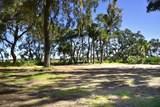 250 Distant Island Drive - Photo 12