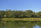 250 Distant Island Drive - Photo 5
