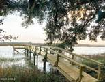 230 Distant Island Drive - Photo 7