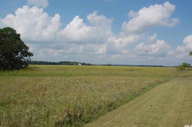 299 Tarpon Boulevard, Fripp Island, SC 29920 (MLS #136723) :: RE/MAX Coastal Realty