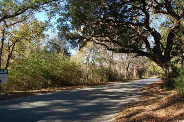 Tbd Old Salem Road, Beaufort, SC 29906 (MLS #137930) :: RE/MAX Coastal Realty
