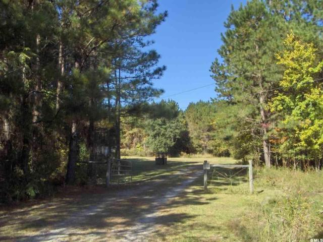 3650 Bees Creek Road, Ridgeland, SC 29936 (MLS #143226) :: RE/MAX Coastal Realty