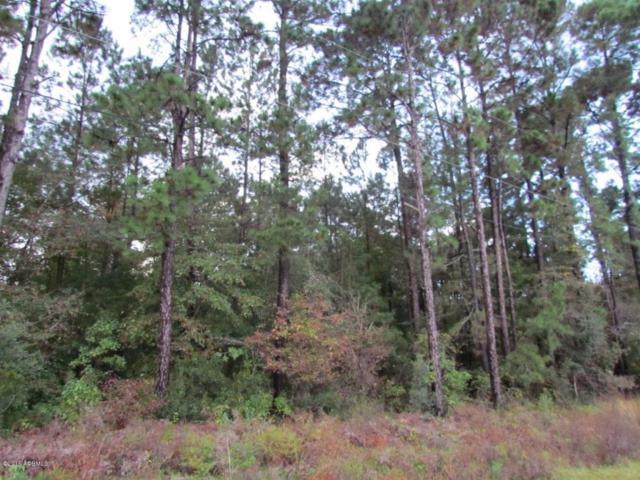 24 Reeds Road, Beaufort, SC 29907 (MLS #145929) :: RE/MAX Coastal Realty