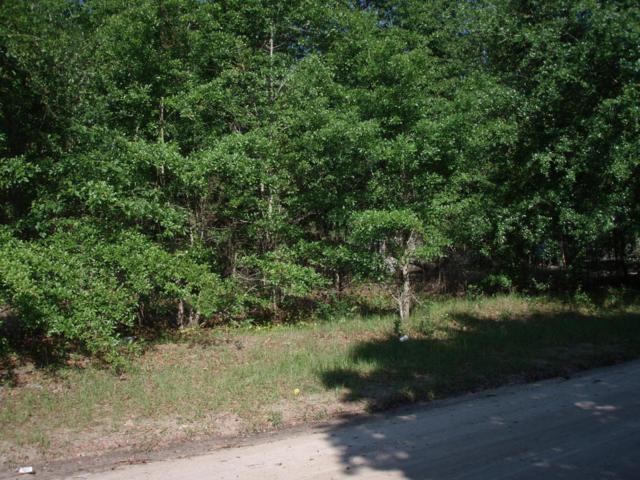 395 Chelsea Lane, Ridgeland, SC 29936 (MLS #148085) :: RE/MAX Island Realty
