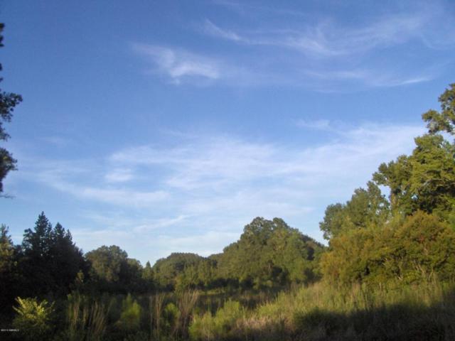 1155 Kress Road, Yemassee, SC 29945 (MLS #148114) :: RE/MAX Island Realty