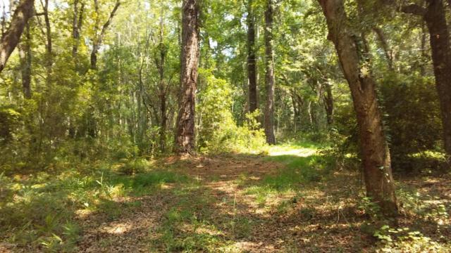 226 Deer Run Road, Fripp Island, SC 29920 (MLS #149702) :: RE/MAX Coastal Realty