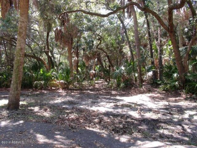 113 Sand Piper Run, Fripp Island, SC 29920 (MLS #149758) :: RE/MAX Island Realty