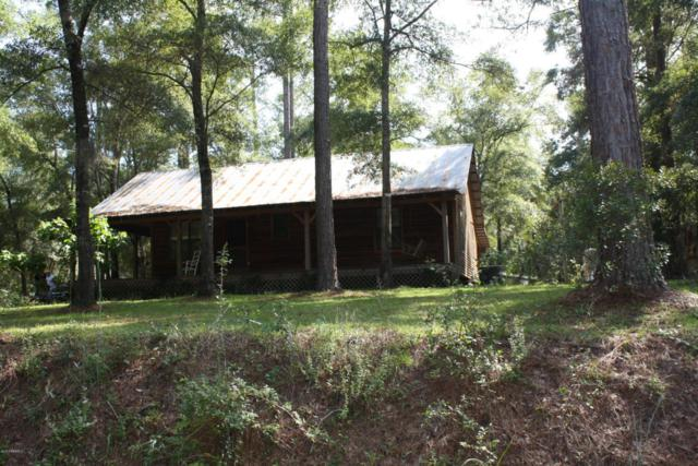 20 Deer Run, Garnett, SC 29922 (MLS #149864) :: RE/MAX Island Realty