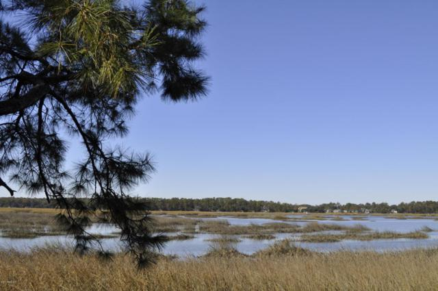 343 Cottage Farm Drive, Beaufort, SC 29902 (MLS #151544) :: RE/MAX Island Realty