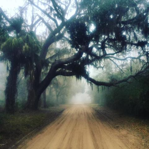 Parcel-G Yard Farm Road, St. Helena Island, SC 29920 (MLS #151885) :: RE/MAX Coastal Realty