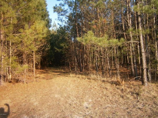 Tbd2 Off Speedway Boulevard, Hardeeville, SC 29927 (MLS #151974) :: RE/MAX Coastal Realty