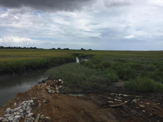 13 Ocean Marsh Lane, St. Helena Island, SC 29920 (MLS #154061) :: RE/MAX Coastal Realty