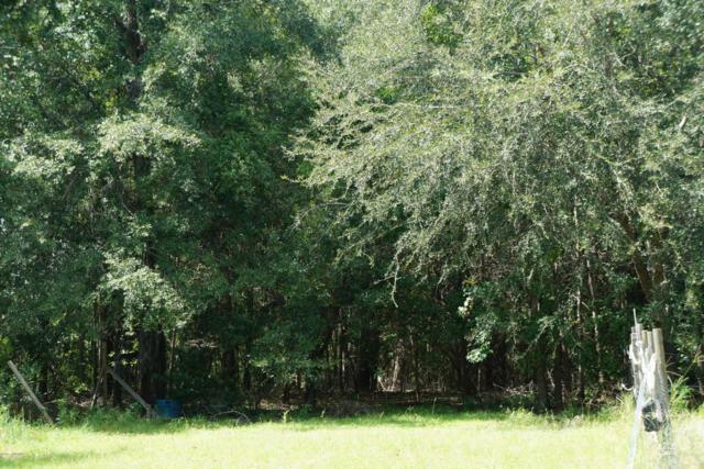 35 Honeysuckle Lane, Beaufort, SC 29907 (MLS #154182) :: RE/MAX Island Realty