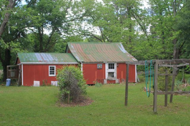 479 State Rd S-3-94, Ulmer, SC 29849 (MLS #154822) :: RE/MAX Island Realty