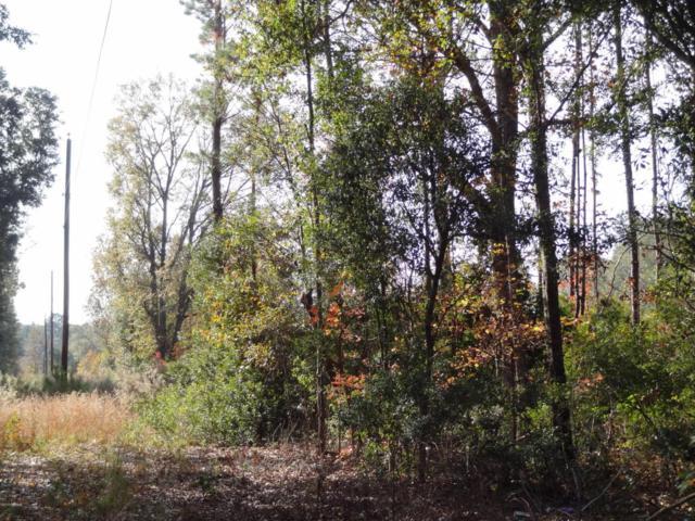 331 County Shed Road, Beaufort, SC 29906 (MLS #155025) :: Marek Realty Group
