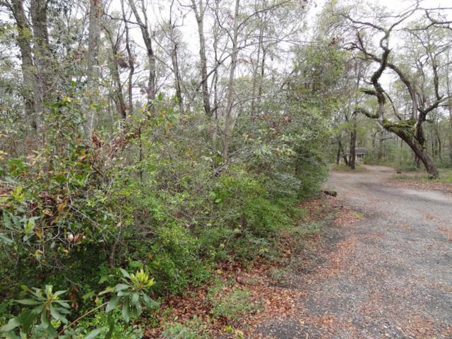 1 Loggerhead Trail, Beaufort, SC 29907 (MLS #155065) :: RE/MAX Coastal Realty