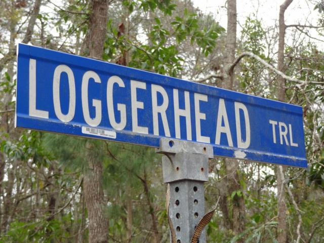 6 Loggerhead Trail, Beaufort, SC 29907 (MLS #155067) :: RE/MAX Coastal Realty