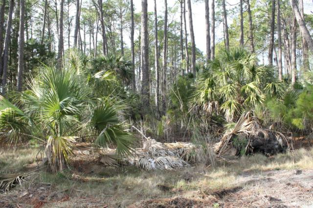 34 Lakeview Lane, St. Helena Island, SC 29920 (MLS #155250) :: RE/MAX Island Realty